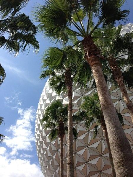 Spaceship Earth & Palms